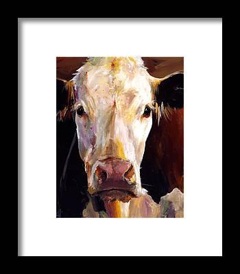 Brown Cow Framed Prints