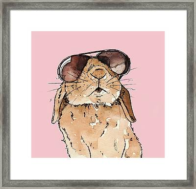 Glamorous Rabbit Framed Print by Katrina Davis