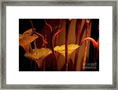 Glass Art Framed Print by Ivete Basso Photography