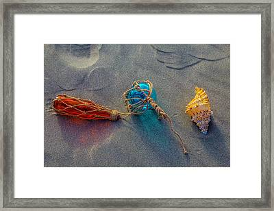 Glass Float And Seashell Framed Print