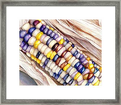 Glass Gem Corn Framed Print
