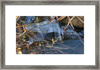 Glass Grasped Grass Framed Print by Doug Bratten