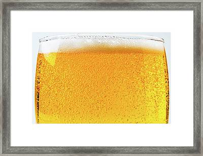 Glass Of Beer Framed Print by Garry Gay