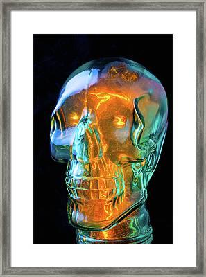 Glass Skull Framed Print by Garry Gay