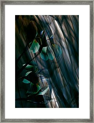 Glass Transparency Framed Print by Marsha Tudor
