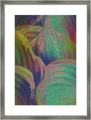 Glassed Leaf Framed Print by Jack Zulli