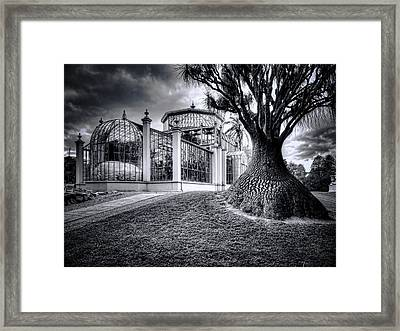 Glasshouse And Tree Framed Print