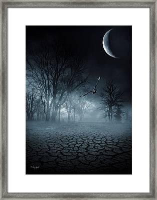 Glaucus Framed Print