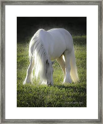 Gleam Framed Print by Terry Kirkland Cook