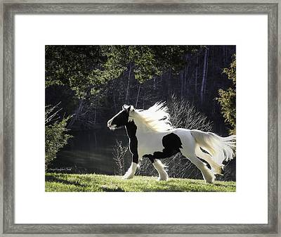 Gleaming Framed Print by Terry Kirkland Cook