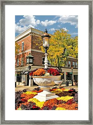 Glen Ellyn Watering Trough Framed Print