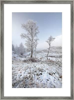 Glen Shiel Misty Winter Trees Framed Print