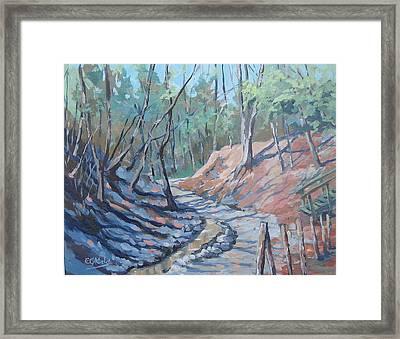 Glen Stewart Ravine Framed Print by Edward Abela