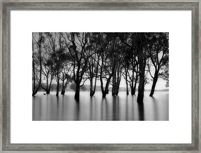 Glenmaggie II Framed Print by Mihai Florea