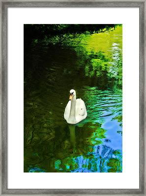 Glide Framed Print by Kat Besthorn