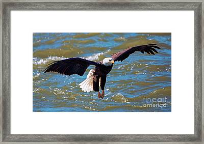 Glide Pattern Framed Print by Mike Dawson