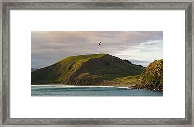 Glide Time Framed Print by Ian Riddler