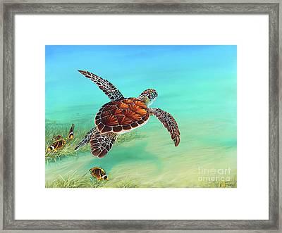 Gliding Through The Sea Framed Print