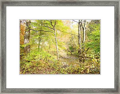 Glimpse Of A Stream In Autumn Framed Print