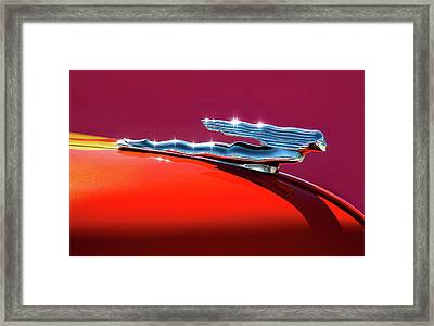 Glinted Beauty Framed Print by Douglas Pittman
