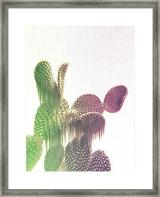 Glitch Cactus Framed Print