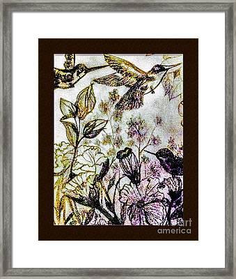 Glittering Hummingbirds Framed Print