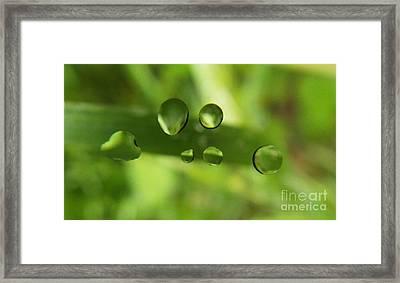Globules Framed Print