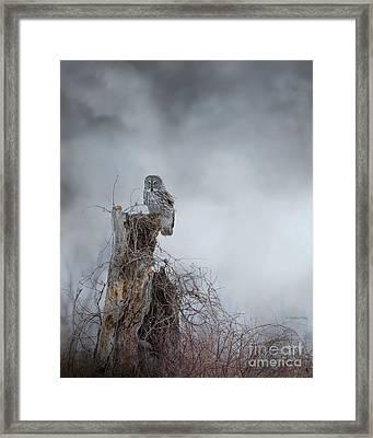 Gloomy Sunday  Framed Print