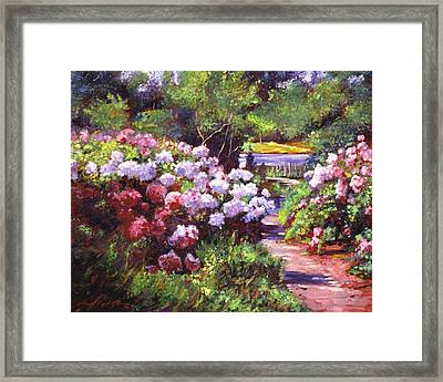 Glorious Blooms Framed Print by David Lloyd Glover