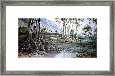 Glorious Gums - Flinders Ranges Framed Print by Diko