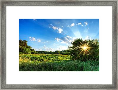 Framed Print featuring the photograph Glorious Landscape by Anthony Rego