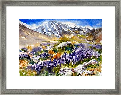 Framed Print featuring the painting Glorious Lupine by Pat Crowther