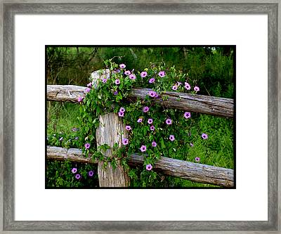 Glorious Morning Framed Print by James Granberry