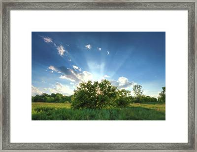 Framed Print featuring the photograph Glorious Sky - A by Anthony Rego