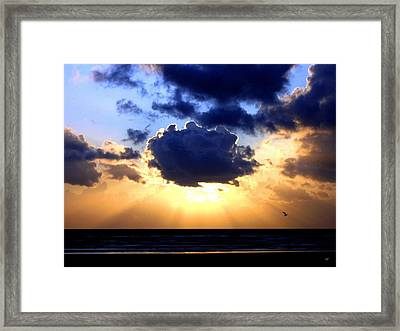 Glorious  Framed Print