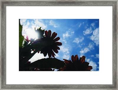 Glory Framed Print by Renee Cain-Rojo