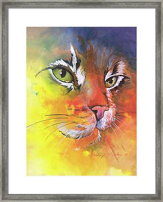 Glow Cat Framed Print
