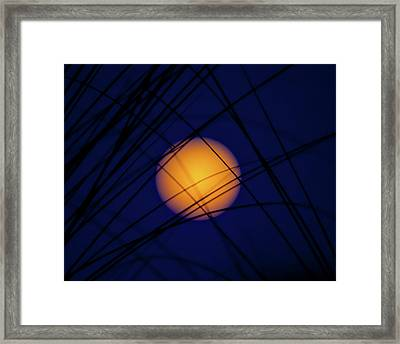 Glow Of The Super Moon Framed Print