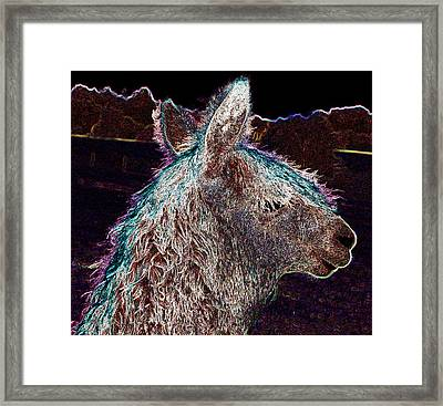 Glowing Alpaca Framed Print