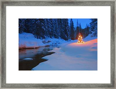 Glowing Christmas Tree By Mountain Framed Print by Carson Ganci