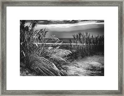 Framed Print featuring the photograph Glowing Dunes Before Sunrise On The Outer Banks Bw by Dan Carmichael