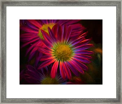Glowing Eye Of Flower Framed Print
