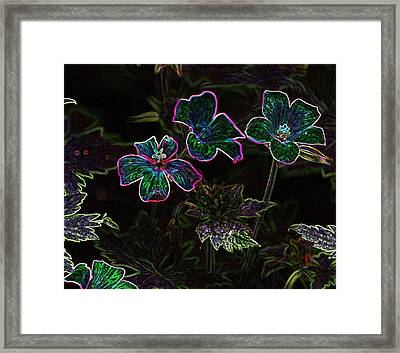 Glowing Flowers Framed Print by Scott Gould