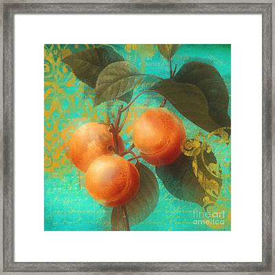 Glowing Fruits Apricots Framed Print
