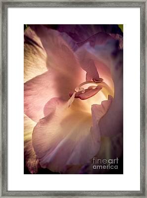 Glowing Glad Framed Print