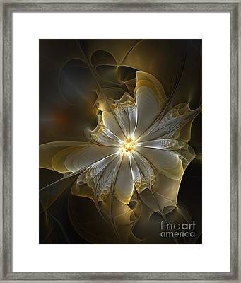Glowing In Silver And Gold Framed Print by Amanda Moore
