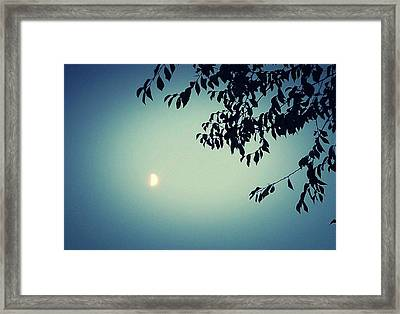 Glowing Moon  Framed Print