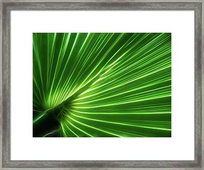 Glowing Palm Framed Print