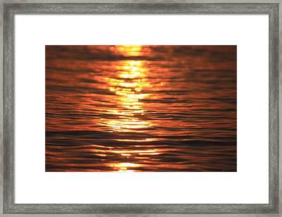 Glowing Ripples Framed Print by Karol Livote