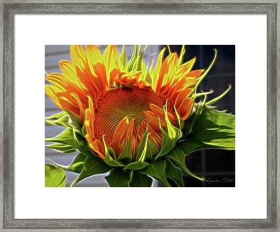 Glowing Sun Framed Print